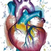 Medical watercolor paintings